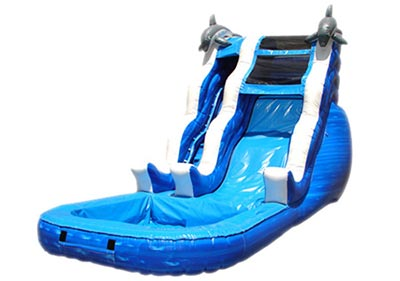 18' Single-Lane Dolphin Waterslide with Pool